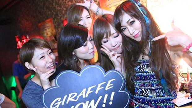 Nightlife in Osaka-Giraffe Osaka Nightclub(3)